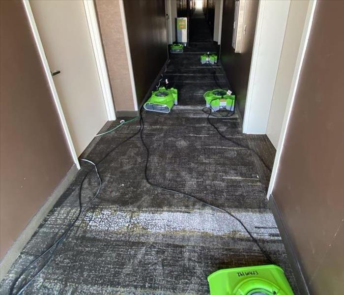 Drying out carpet in hotel hallway
