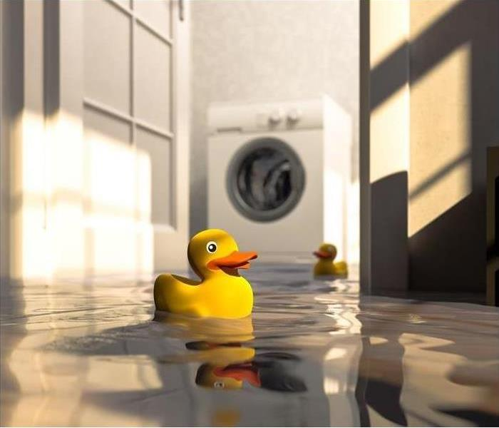 Flooded room with rubber duck