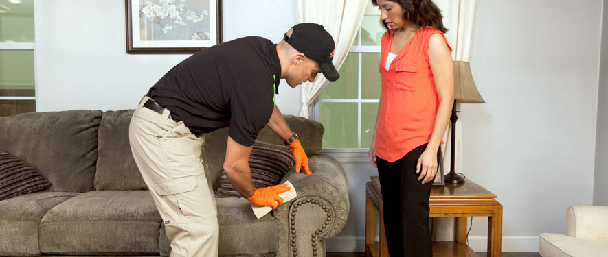 El Paso, TX carpet upholstery cleaning